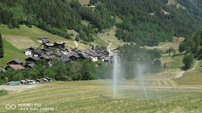 השקיה בשוויץ הירוקה