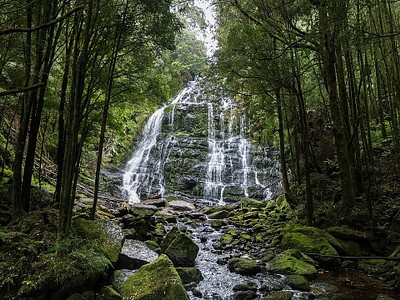 Nelson Falls.