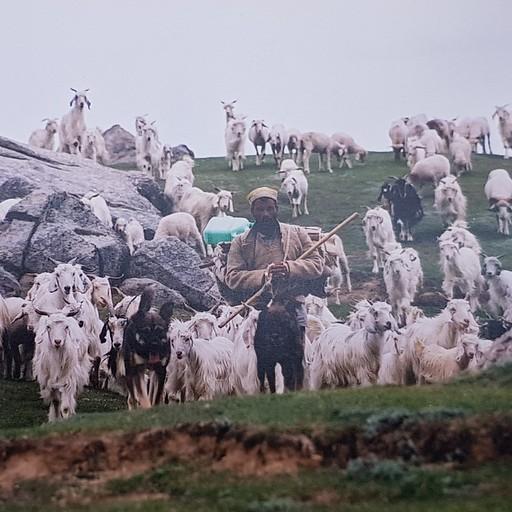 בומבונים - מקירגנגה לקלגה