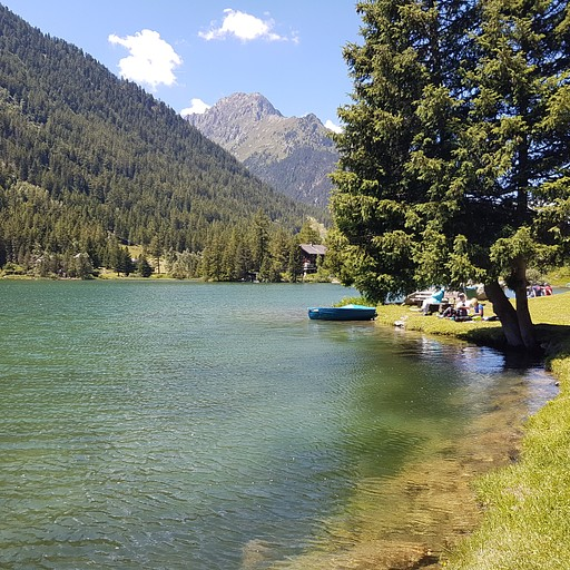 פיקניק באגם שאמפה