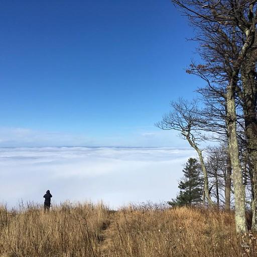 בהר - מעל הערפל