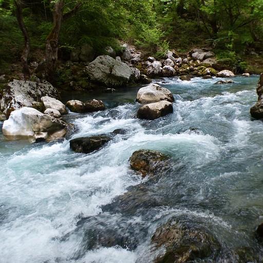 מעיינות הויקוס! קשה לתפוס בתמונה את השינוי הפתאומי שחל בנחל, אבל את המים השוצפים והכחולים דווקא הכנסנו!