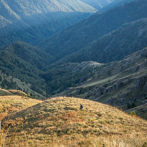 מנזר רילה נמצא אי שם למטה במעבה היער