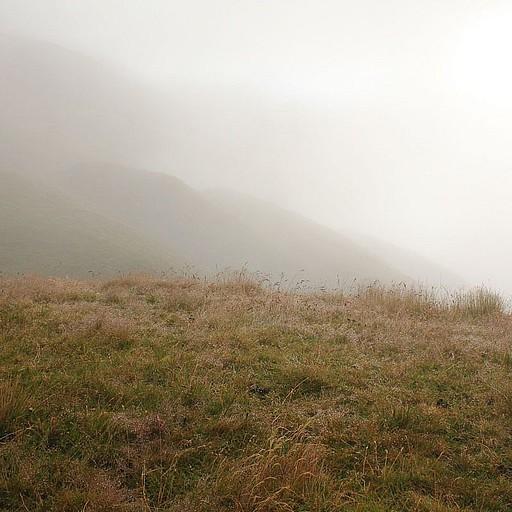 הנוף הערפילי בירידה מהבקתה בבוקר