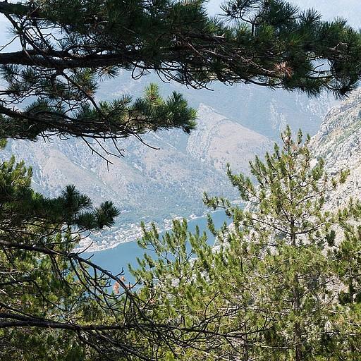 הצצה ראשונה למפרץ Kotor