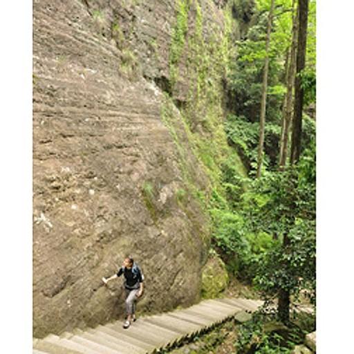 מצוק שמסתיים בגרם מדרגות. נוף אופייני לפארק