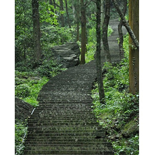 1050 מדרגות, ספרנו