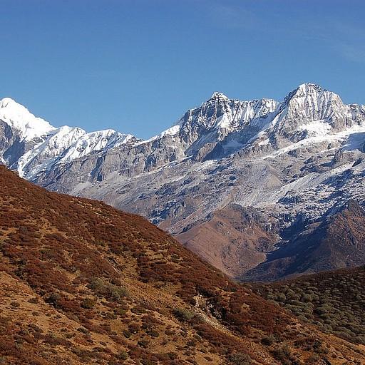 הר פנדים, הוא הכוכב של היום!