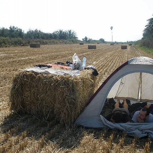 ישנים בשדה חרוש בצד המערבי של הכנרת