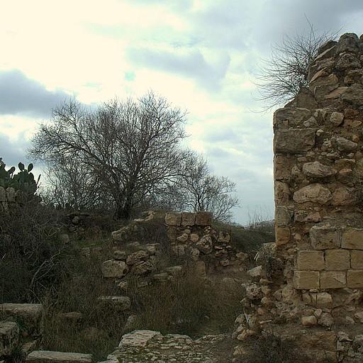 המבצר הצלבני על תל צובה
