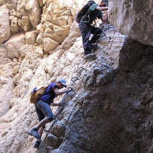 מטפסים בסולם