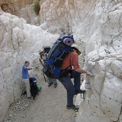 מטפסים עוד סולם