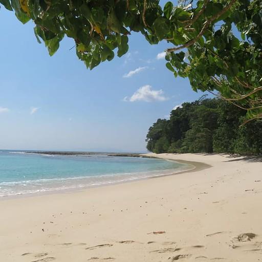 הלגונה בחוף 7