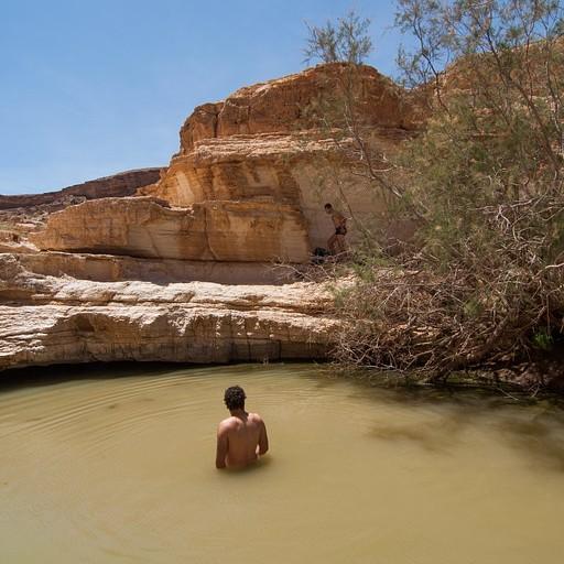 הבריכה העליונה