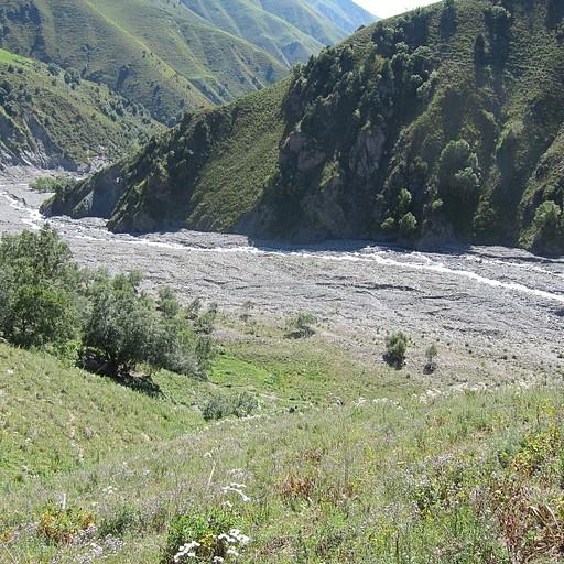 ממש בתחילת העליה כשעוזבים את הנחל ניתן לראות את קצה מקבץ העצים