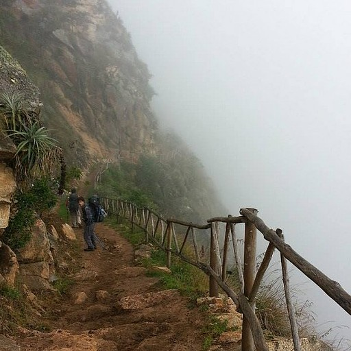 צועדים בערפל