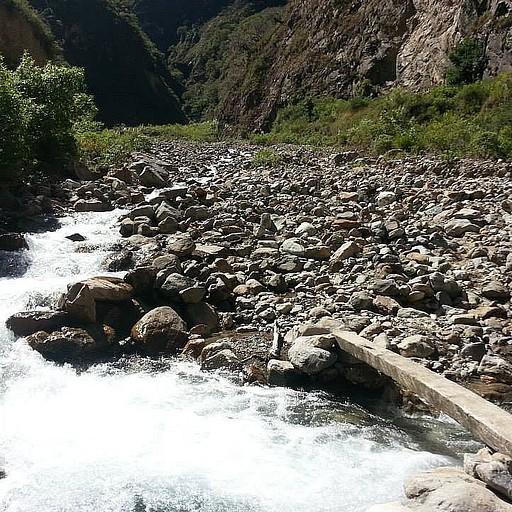 חציית הנהר על קורת עץ