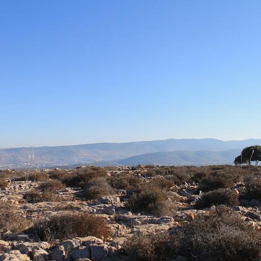 הר השאבי