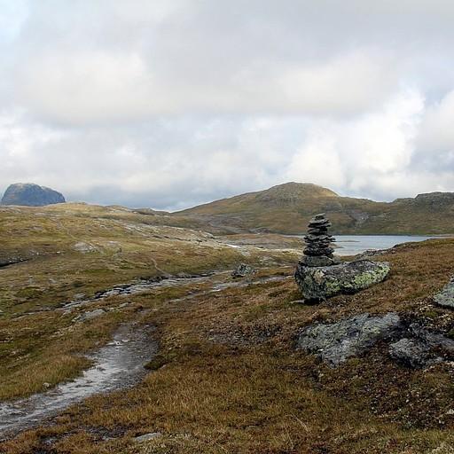 הדרך אל ההר הגבוה בשמורה