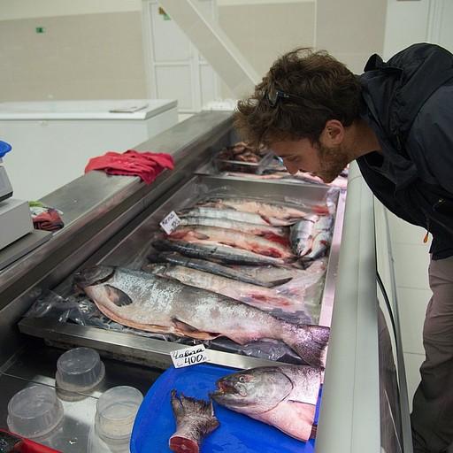 שוק הדגים - המון סלמון טרי ומעושן, איקרה וסרטנים בזול