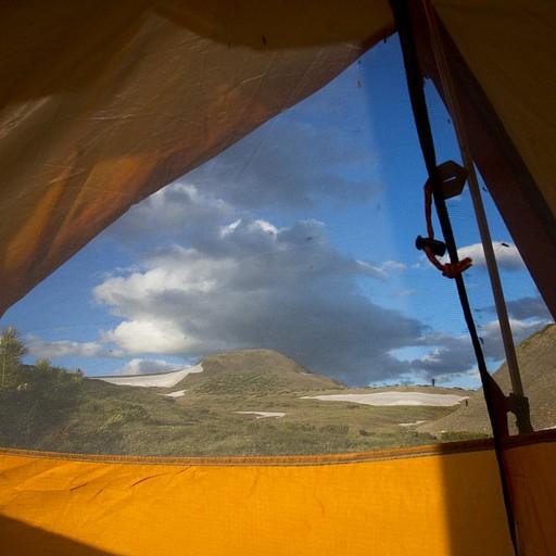 משאירים את האוהל פתוח מחכים לדובים