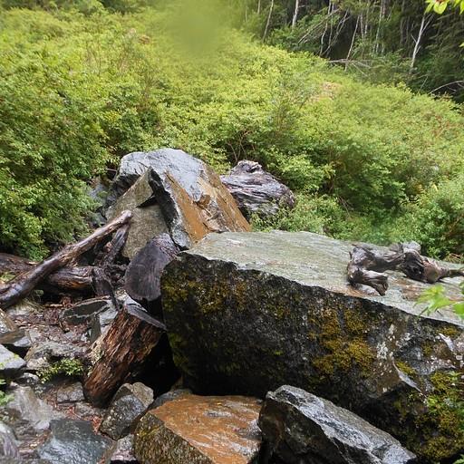הסלע שמתבלבלים בו, עולים עליו ופונים ימינה (נראה שהשביל משמאל)