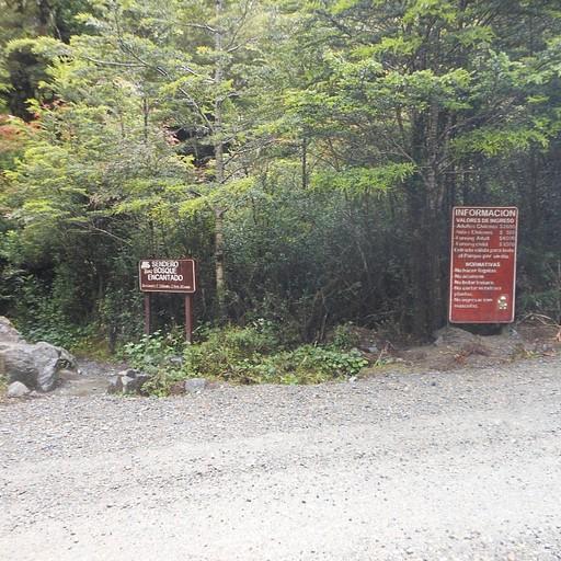 הכניסה ליער - השלטים שרואים מהטרמפ