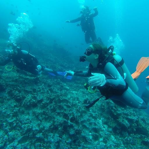 צלילה ב-Gorden Rock