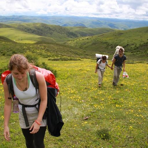 הגבעות הירוקות בדרך לפס