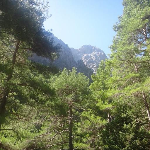 הנוף מהפסגה ומהשביל