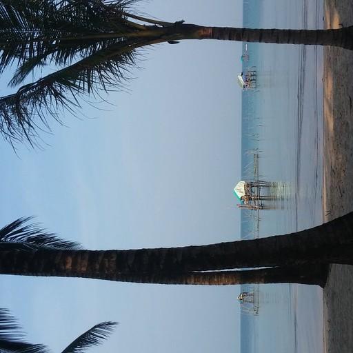 החוף הצפו