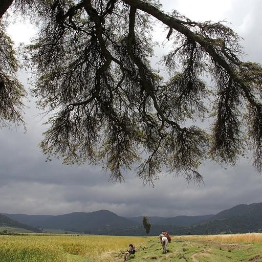 השדות בדרך חזרה מדורו לאדבה היום החמישי