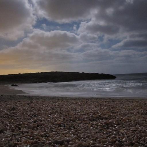 חוף הבונים לפנות בוקר