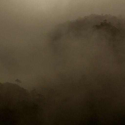 בתוך הערפל