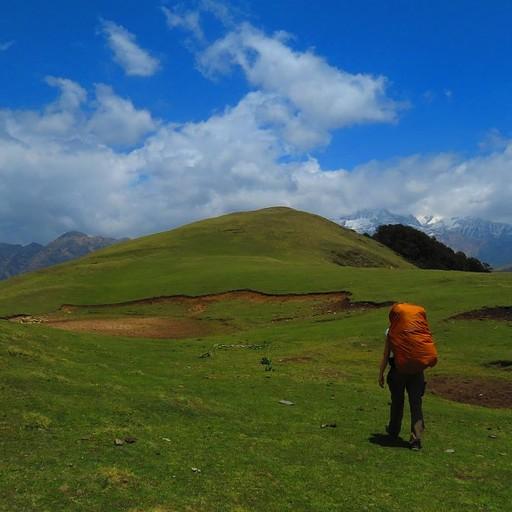 הרים מכוסים עשב