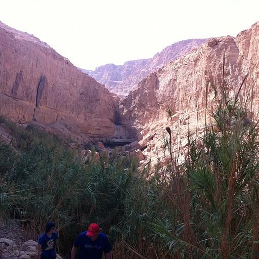 הדרך למערת דודים