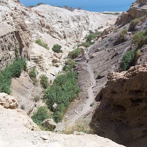 נחל דוד התחתון ממערת דודים