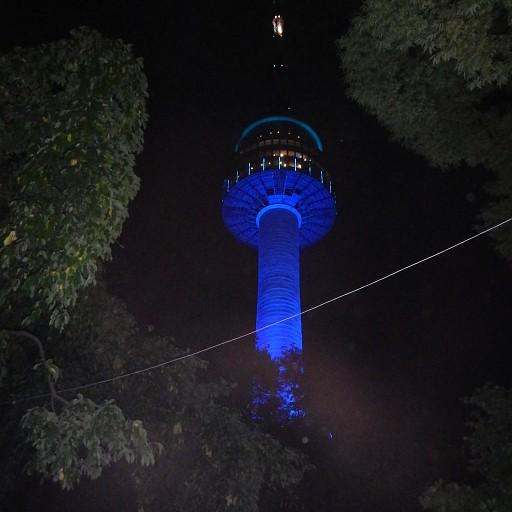 המגדל בלילה