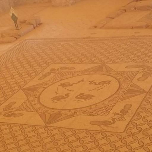 פסיפס רצפת בית הכנסת