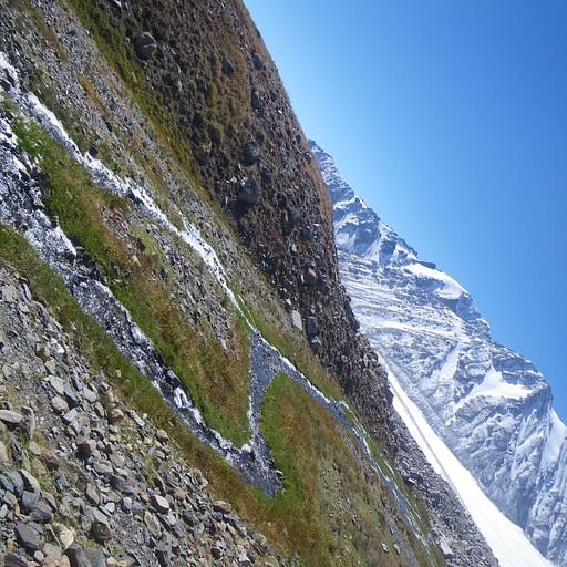בדרך להר