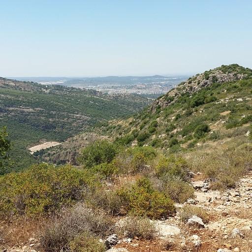 הנוף משלוחת הר-טוב