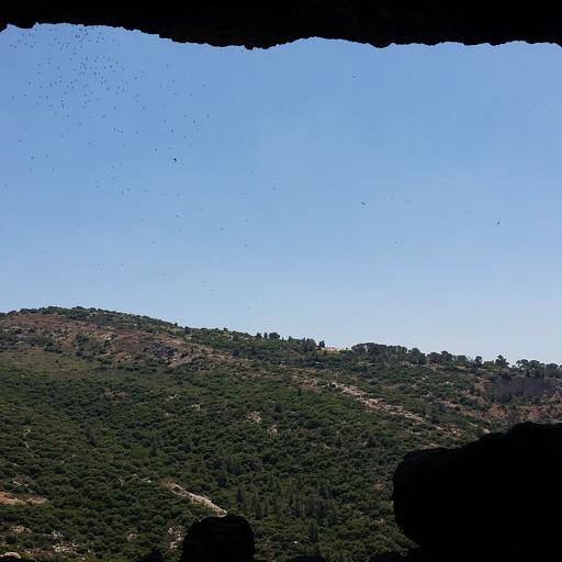הנוף ממערת שמשון