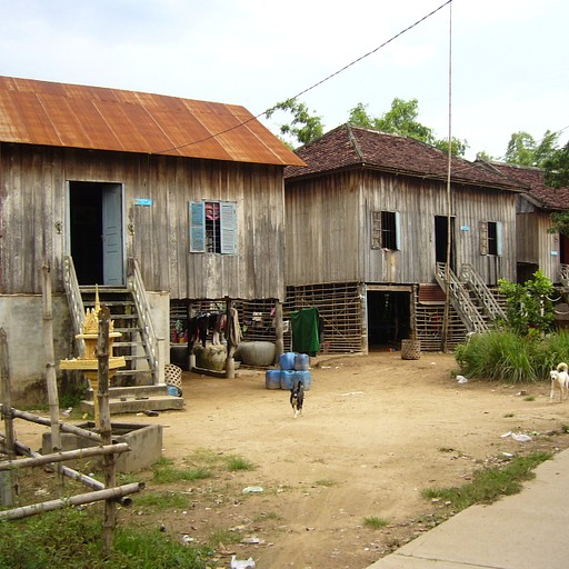בתי העץ בקו פאאן