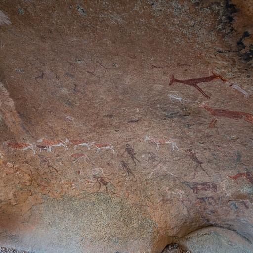 ציורי הסלע White lady