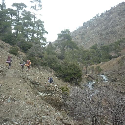 הלכנו בנחל שיורד מהטרודוס לקקופטריה