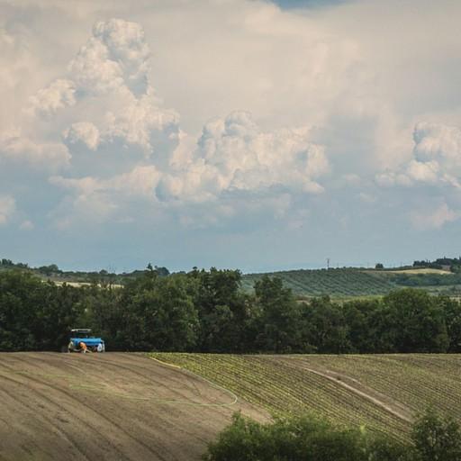 הנופים הכפריים שנראים מהדרך