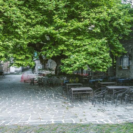 כיכר העיר בצפולובו, סביב עץ הדולב, כמו כמו הכיכרות בכפרים השכנים