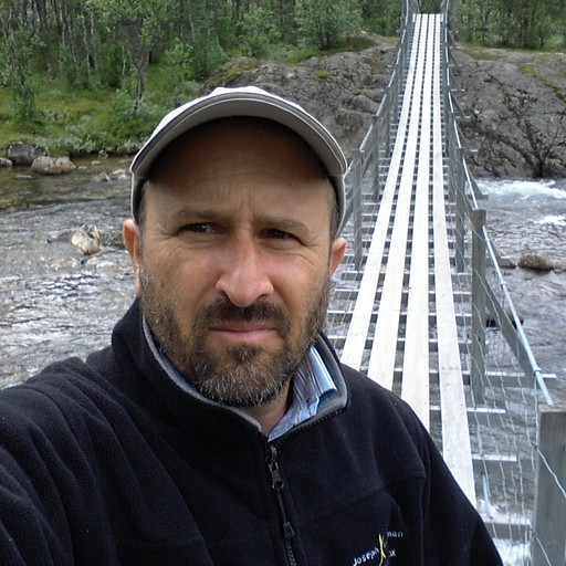 בדרך לקרחון עוברים גשרי עץ