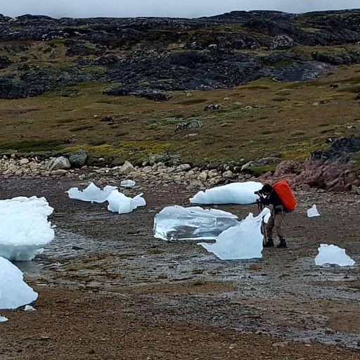 קרחונים שנתקעו על החוף בזמן שפל
