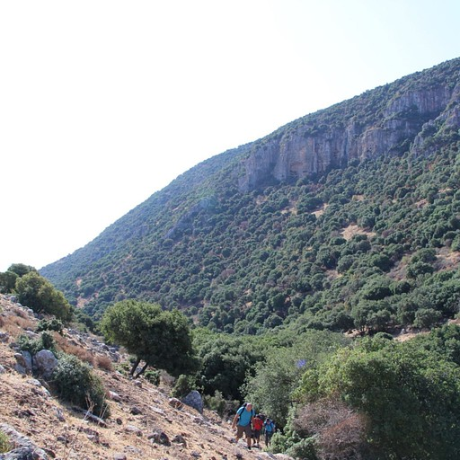 תצפית אל מצוק הר אביתר